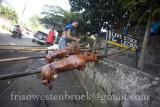 16 Lechon Baboy/Roast Pig