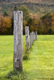 Posts In Byron ME