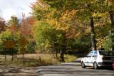 VW Fall Foliage Cruise