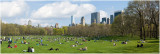 Spring in Sheep Meadow