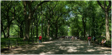 The Mall Panorama