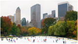 Autumn at Wollman Rink