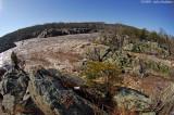 Potomac Merging