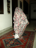 Shapeless ghost