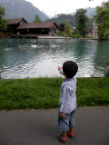 Strolling along the canal and watching the swans