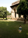 Lodhi Garden patch of sunlight