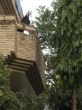 Nizamuddin balcony goat