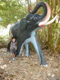 ... elephant