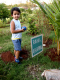 Tree planted in Rahil's name, Cuffe Parade, Bombay