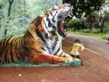 Bhopal Zoo