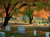 1024x768 Arlington Cemetery in Fall