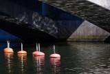Buoys under the bridge