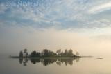 Four Foggy Mornings
