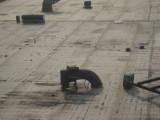 Smith Street Asbestos Removal