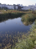 Whole Foods Site--Gowanus Canal