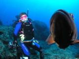 Bob's photo of Carol and grouper