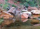 Reflections: Upper Pool
