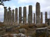 The Temple of Zeus at Uzumcaburc