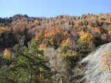 As we went higher, fall colors became more brilliant, which could only mean one thing...