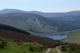 Towards Lough Dan