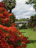 Mount Usher Gardens, near Ashford