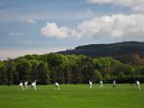 Cricket in Marlay Park