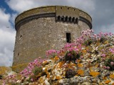Martello Tower, Ireland's Eye