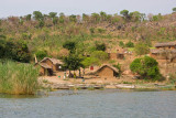 On the banks of the lake in Tanzania.