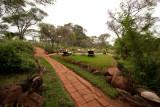 Offbeat Meru Camp