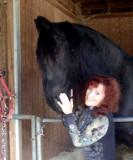 has me wrapped around his big ol' hoof...