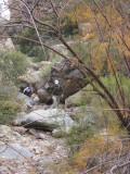 Boulder-hopping a creekbed
