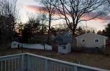 Backyard - 0405