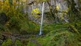 Elowah Falls Panorama.jpg