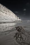 Cliffs at the Torrey Pines State Beach