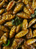 Fried palm worms delicacy