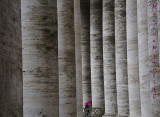 Life among columns