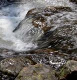Mountain Stream RMNP