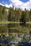 Nymph Lake RMNP