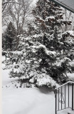 Snow on March 28