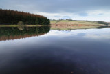 Thruscross Reservoir  10_DSC_0385