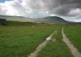 Ingleborough  DSC_0515