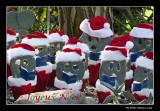 Un choeur de Pères Noël vous souhaitent de Joyeuses Fêtes!