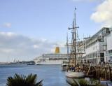 Sail & Cruise