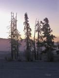 Dawn's Early Light