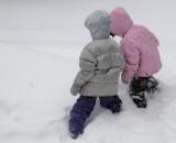 Friendship in fresh snow