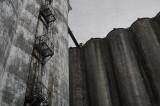 Halifax grain terminal