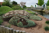 A garden for the turtle freaks