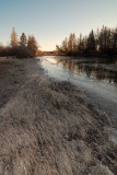 Early spring morning on the Stewiacke River