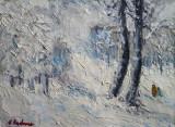 Peisaj de iarna(colectie particulara)