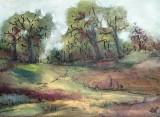 Peisaj de toamna  (colectie particulara)